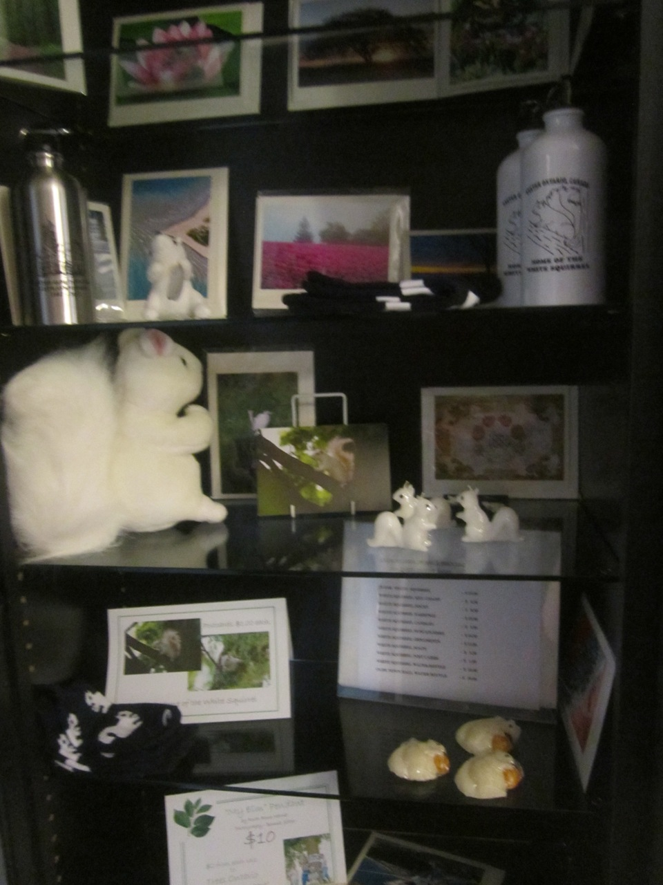 White Squirrel Objects!